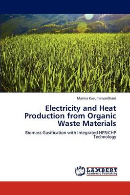 Electricity and Heat Production from Organic Waste Materials (Paperback)