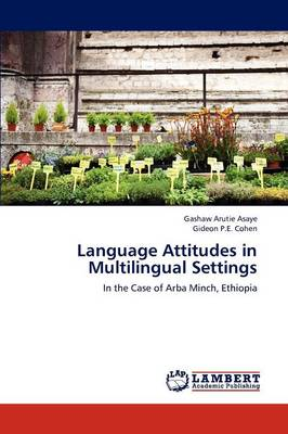 Language Attitudes in Multilingual Settings (Paperback)