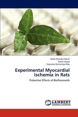 Experimental Myocardial Ischemia in Rats (Paperback)