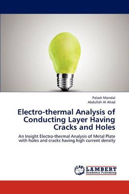 Electro-Thermal Analysis of Conducting Layer Having Cracks and Holes (Paperback)