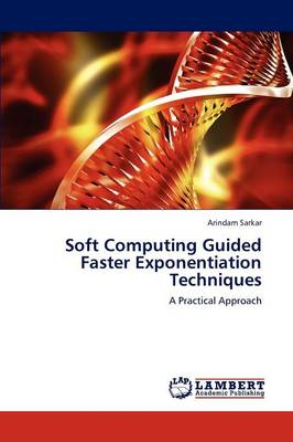 Soft Computing Guided Faster Exponentiation Techniques (Paperback)