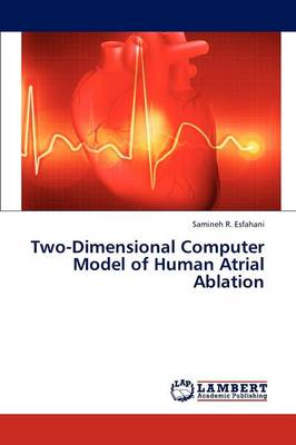 Two-Dimensional Computer Model of Human Atrial Ablation (Paperback)
