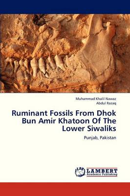 Ruminant Fossils from Dhok Bun Amir Khatoon of the Lower Siwaliks (Paperback)