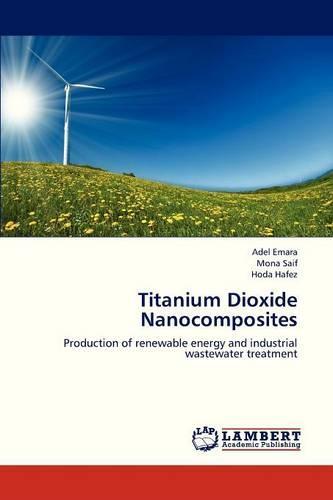 Titanium Dioxide Nanocomposites (Paperback)