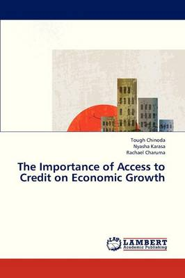 The Importance of Access to Credit on Economic Growth (Paperback)