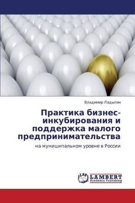 Praktika Biznes-Inkubirovaniya I Podderzhka Malogo Predprinimatel'stva (Paperback)