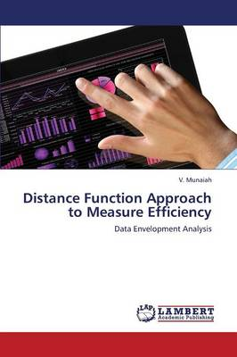 Distance Function Approach to Measure Efficiency (Paperback)