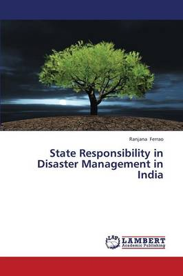 State Responsibility in Disaster Management in India (Paperback)