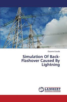 Simulation of Back-Flashover Caused by Lightning (Paperback)