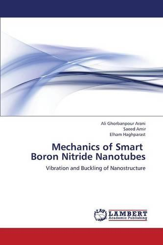 Mechanics of Smart Boron Nitride Nanotubes (Paperback)