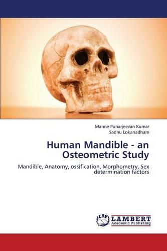 Human Mandible - An Osteometric Study (Paperback)