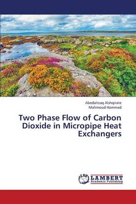 Two Phase Flow of Carbon Dioxide in Micropipe Heat Exchangers (Paperback)
