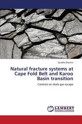 Natural Fracture Systems at Cape Fold Belt and Karoo Basin Transition (Paperback)