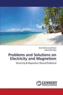 Problems and Solutions on Electricity and Magnetism (Paperback)