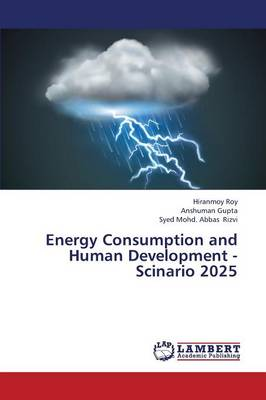 Energy Consumption and Human Development - Scinario 2025 (Paperback)