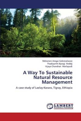 A Way to Sustainable Natural Resource Management (Paperback)