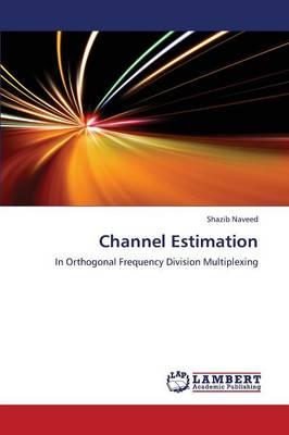 Channel Estimation (Paperback)