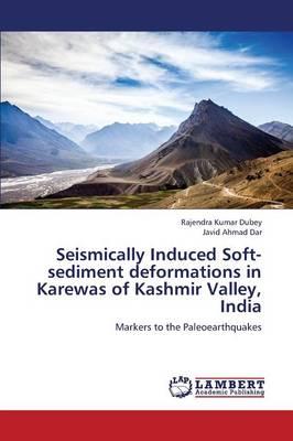 Seismically Induced Soft-Sediment Deformations in Karewas of Kashmir Valley, India (Paperback)