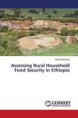 Assessing Rural Household Food Security in Ethiopia (Paperback)