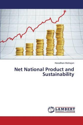 Net National Product and Sustainability (Paperback)