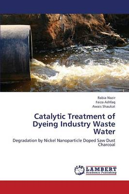 Catalytic Treatment of Dyeing Industry Waste Water (Paperback)