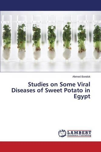 Studies on Some Viral Diseases of Sweet Potato in Egypt (Paperback)