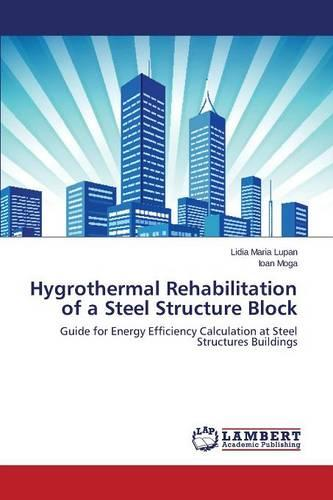 Hygrothermal Rehabilitation of a Steel Structure Block (Paperback)