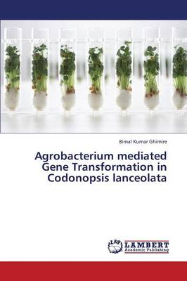 Agrobacterium Mediated Gene Transformation in Codonopsis Lanceolata (Paperback)
