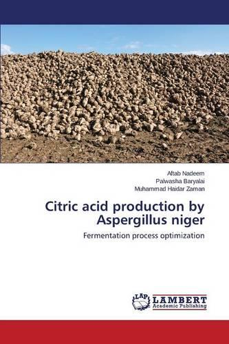 Citric Acid Production by Aspergillus Niger (Paperback)