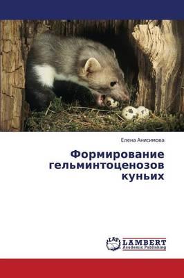 Formirovanie Gel'mintotsenozov Kun'ikh (Paperback)