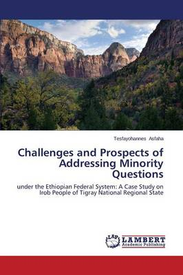 Challenges and Prospects of Addressing Minority Questions (Paperback)