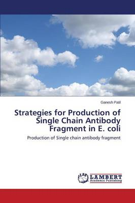 Strategies for Production of Single Chain Antibody Fragment in E. Coli (Paperback)