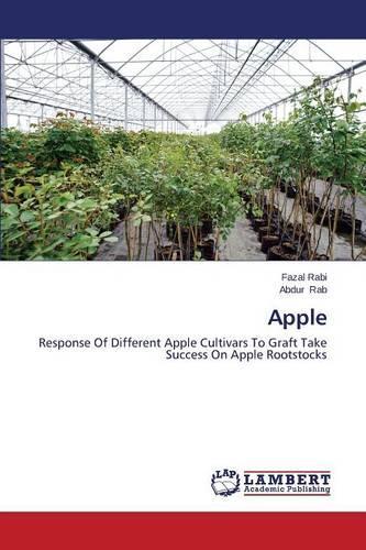 Apple (Paperback)