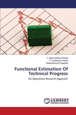 Functional Estimation of Technical Progress (Paperback)