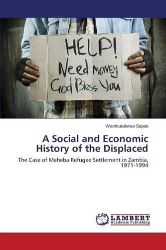 A Social and Economic History of the Displaced (Paperback)