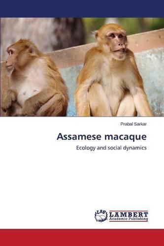 Assamese Macaque (Paperback)
