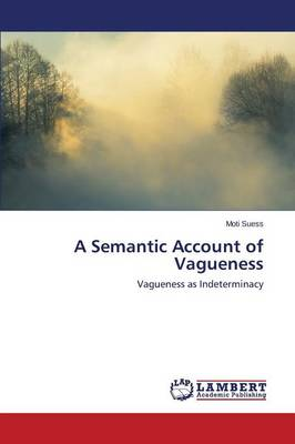 A Semantic Account of Vagueness (Paperback)