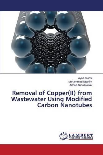Removal of Copper(ii) from Wastewater Using Modified Carbon Nanotubes (Paperback)