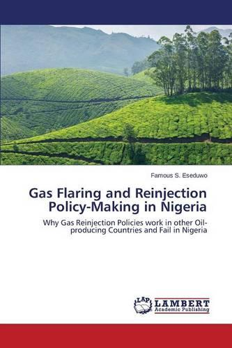 Gas Flaring and Reinjection Policy-Making in Nigeria (Paperback)