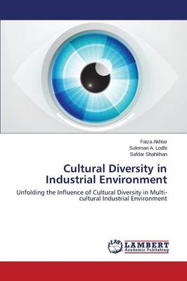 Cultural Diversity in Industrial Environment (Paperback)