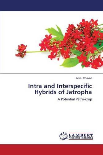 Intra and Interspecific Hybrids of Jatropha (Paperback)