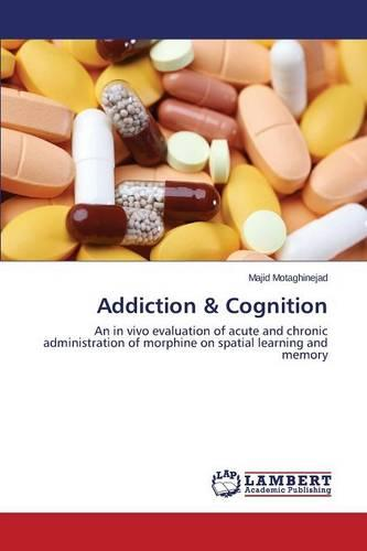 Addiction & Cognition (Paperback)