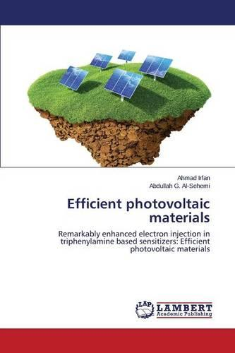 Efficient Photovoltaic Materials (Paperback)