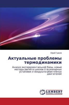 Aktual'nye Problemy Termodinamiki (Paperback)