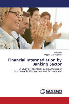 Financial Intermediation by Banking Sector (Paperback)