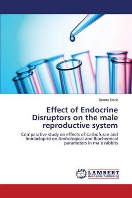 Effect of Endocrine Disruptors on the Male Reproductive System (Paperback)