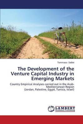 The Development of the Venture Capital Industry in Emerging Markets (Paperback)