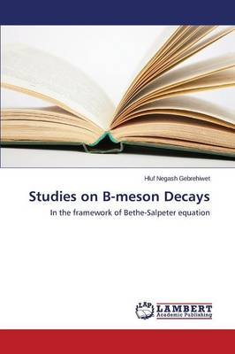 Studies on B-Meson Decays (Paperback)