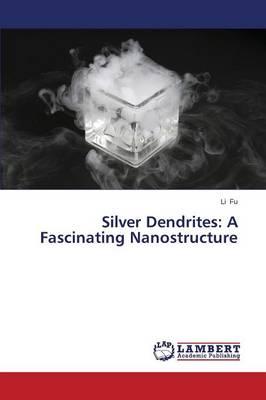 Silver Dendrites: A Fascinating Nanostructure (Paperback)