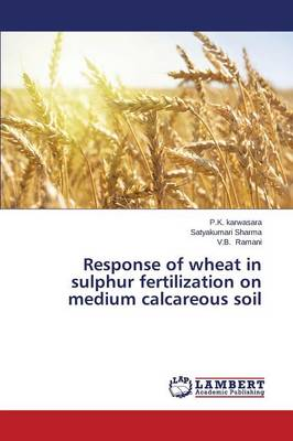 Response of Wheat in Sulphur Fertilization on Medium Calcareous Soil (Paperback)